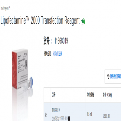 Lipofectamine™ 2000 Transfecti